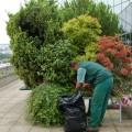 Des contrats adaptés pour une terrasse toujours bien entretenue
