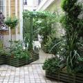 La fraîcheur d'un passage verdoyant entre immeubles
