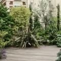 Une terrasse qui associe un deck et des végétaux très variés