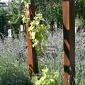 Un coin de Provence sur la terrasse