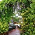 Une pergola foisonnante tel un portail végétal