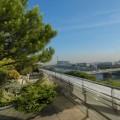 Un exemple d'intégration ville-nature pour cette terrasse d'entreprise