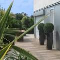 Une terrasse où les cheminées font place au jardin